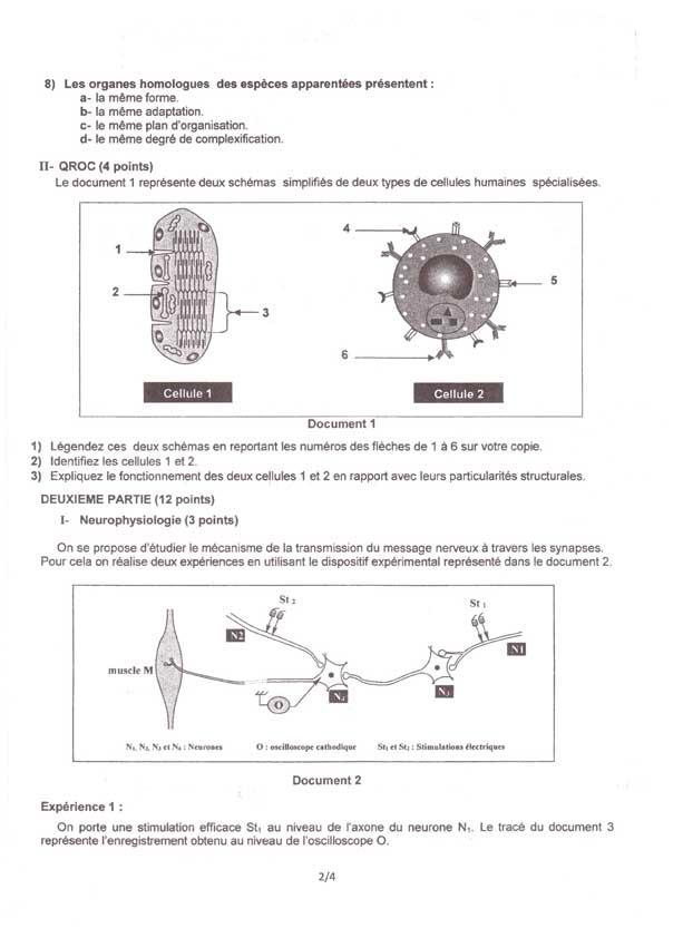 section-sciences-02